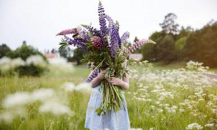 Combattere le allergie primaverili