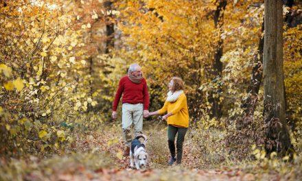 Osteoporosi: sintomi, cause e prevenzione