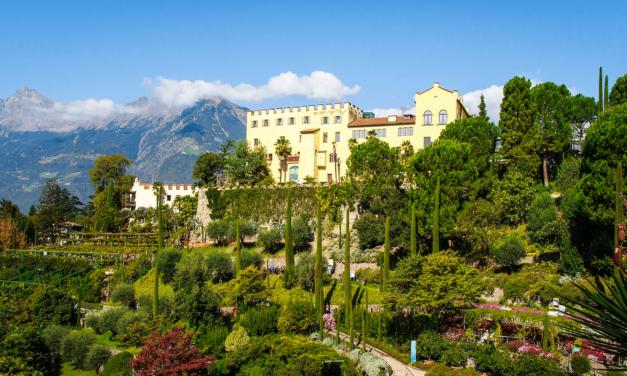 Un tour virtuale dei giardini botanici più belli del mondo