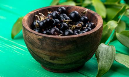Proprietà e benefici del Ribes nigrum
