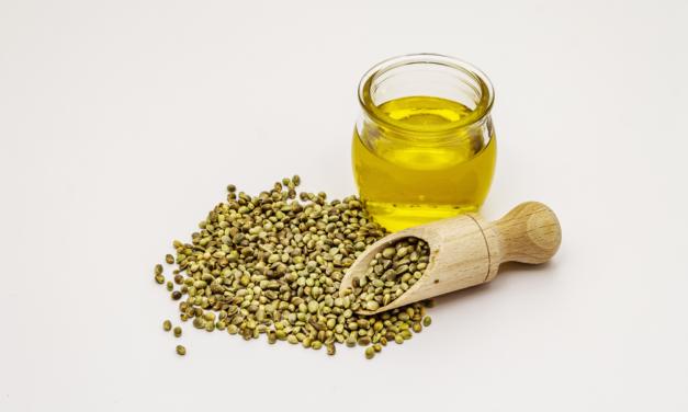 Olio di semi di canapa: benefici e usi